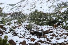 Moniquevanderwalt_SaniPass_Kwazulunatal_southafrica_snow (15)