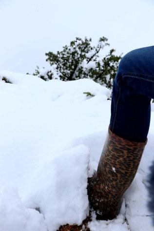 Moniquevanderwalt_SaniPass_Kwazulunatal_southafrica_snow (18)