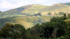 moniquevanderwalt_bulwer_kwazulunatal_southafrica_marutswa_forest (4)