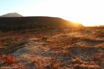 moniquevanderwalt_bulwer_kwazulunatal_southafrica_photoraphy_canon_kzn_winter (8)-2