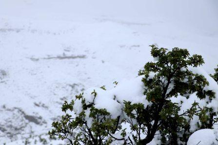 Moniquevanderwalt_SaniPass_Kwazulunatal_southafrica_snow_road_trip_photography_drakensberg_lesotho (4)