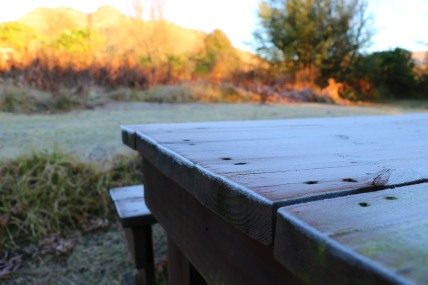 moniquevanderwalt_southafrica_kwazulunatal_drakensberg_bulwer_travel_tourism_weather_nerd_photography_frosted_grass (2)