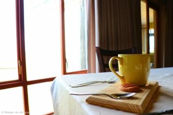 moniquevanderwalt_photography_southafrica_midlandsmeander_brahmanhills_restaurant_n3gateway_kwazulunatal_tourism_canon_idotourism_wedotourism_nature (47)-2
