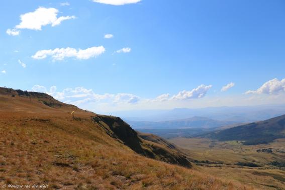 moniquevanderwalt__canon_photography_southafrica_southern_drakensberg_kwazulunatal_wildsky_paragliding_bulwer (10)-2.jpg