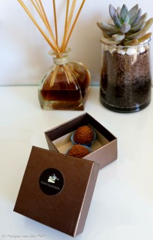 moniquevanderwalt_chocolatebox_gordonsbay_capetown_photography (36)
