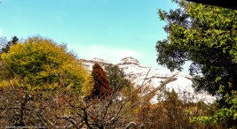 bulwer_cottageimvana_snow_kwazulunatal (1).jpg