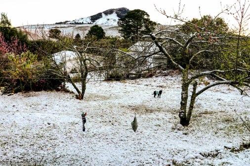bulwer_kwazulunatal_snow_drakensberg (9).jpg
